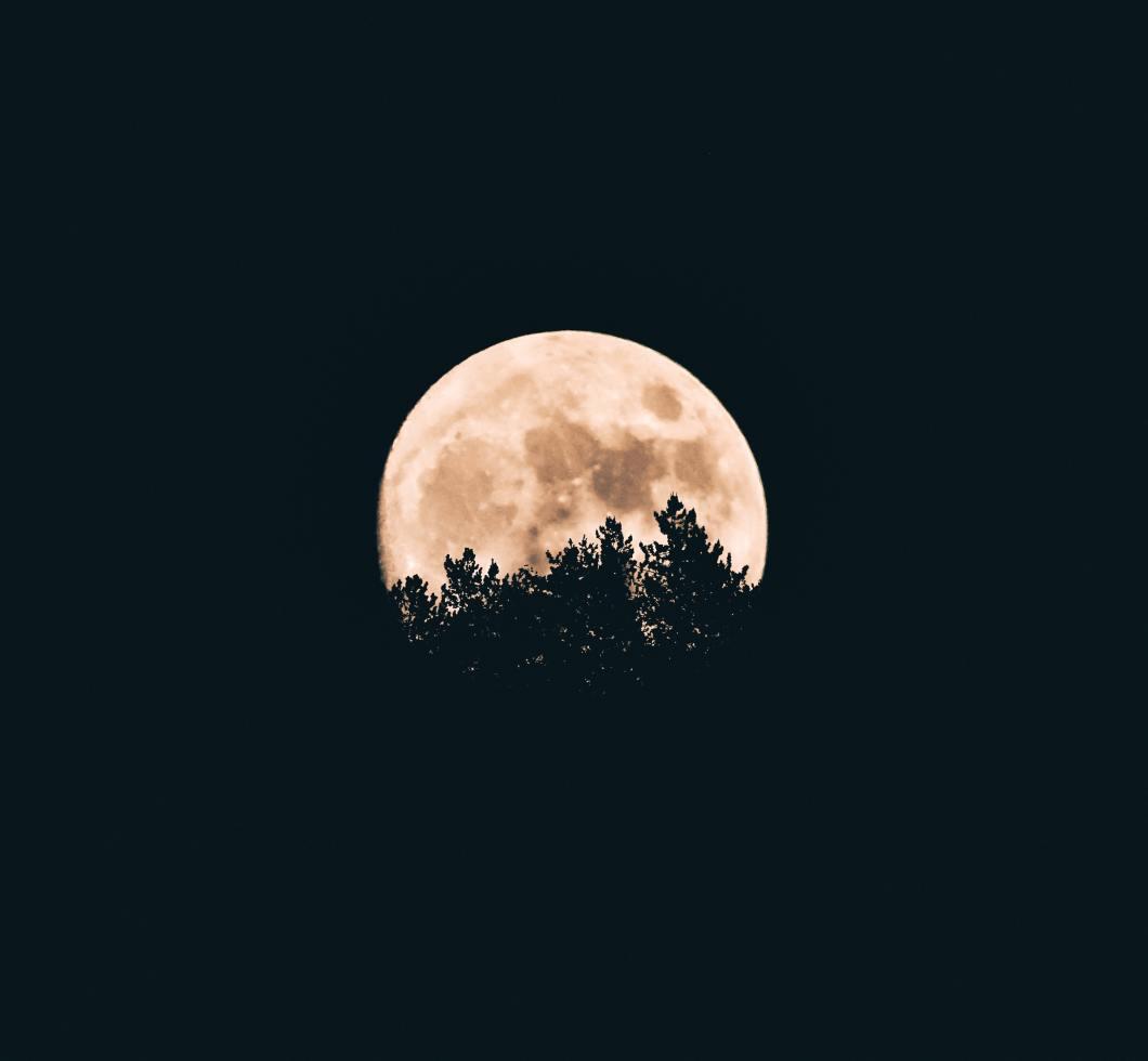 Full moon Pink moon wolf moon snow moon