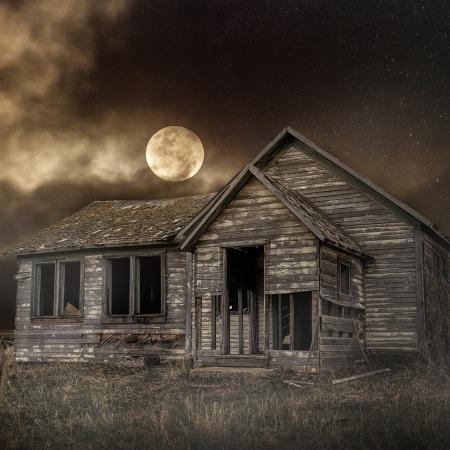 Moon and wolf - January full moon